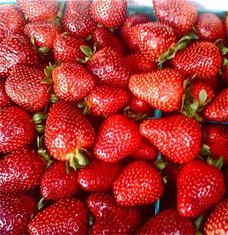 Strawberries from Harry's Berries